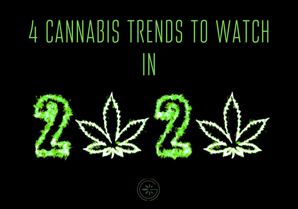 4CannabisTrends2020pic
